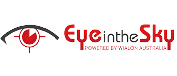 Eye in the skye logo